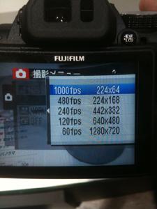 CP_fuji03.jpg