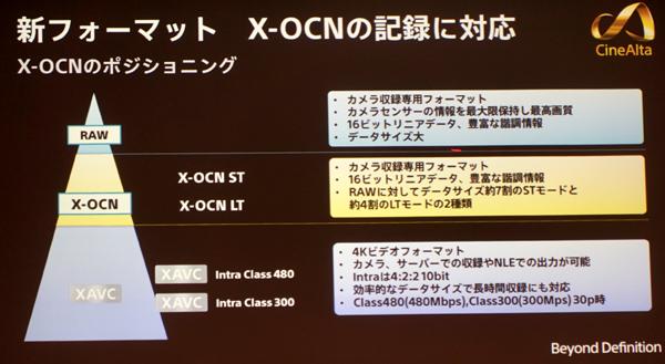XOCN06.jpg