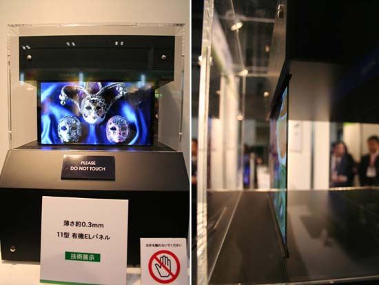 display02.jpg