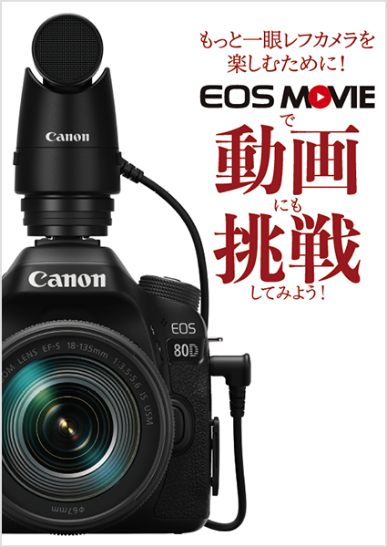 eos80d.png