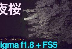 【Ufer! VLOG 124】Sigma 50-100 + PXW-FS5で撮る夜桜
