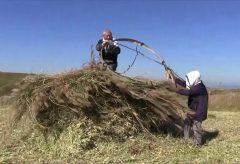 【Views】『阿蘇原野 草小積み』6分48秒〜世界農業遺産に登録された熊本県阿蘇地域の草原で、畜産業者の現象や大型機械の採用で今まさに姿を消そうとしている「草小積み」を記録
