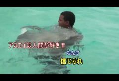 【Views】『ケイマン島の赤エイ達』7分5秒〜コロンブスが発見した西インド諸島ケイマン島でのめずらしいエイに触れ合うイベントを撮影