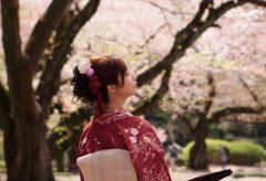 【Views】『A flurry of cherry blossoms 2018 / 新宿御苑 桜吹雪』~足袋や傘など、桜に合わせた小道具をアクセントに編集で魅せる