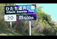 【Views】『 HITACHINAKA ABOVE』3分16秒~太平洋に面し、広大な敷地を誇るひたちなか海浜公園を縦横無尽にカメラが追い回す