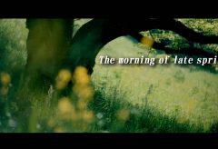 【Views】『The morning of late spring』2分40秒~晩春のある早朝の公園で、カメラは咲きそろった花々や木々の狭間を縫うように走る