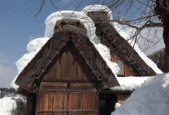 【Views】『冬の白川郷』4分16秒~雪に覆われた家屋とともに凍りついた木々も印象的