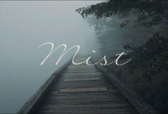 【Views】『Mist』2分35秒~好奇心の中にも怖さを表現した子どもの眼の1カットが忘れられない