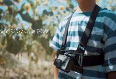 【Views】『ひまわり村の巨大迷路にチャレンジ』2分41秒~親子のひまわり畑の迷路チャレンジを2台のカメラで互いに描く