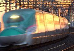 【Views】『那須塩原はやぶさ通過』2分32秒~駅のアナウンス、絶好のアングル、夕陽に照らされる車体等々、特に列車侵入前、鳥たちが線路から立ち去るショットはワクワク感MAX