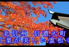【Views】『信濃大町 紅葉が美しい霊松寺』4分15秒~想い通りの紅葉に心躍る作者の心境を映し出すように見事な紅葉風景が展開していく