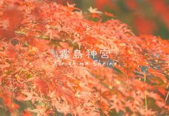 【Views】『2018-秋の霧島神宮』3分48秒~坂本龍馬も新婚旅行で訪れ、天津日高彦伝説後でもある霧島神宮の秋をゆったりと写し取っていく