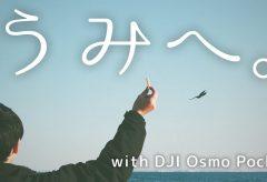 【Views】『うみへ。』1分58秒~三河湾に浮かぶ無人島の竹島でカモメを中心にスローモーションを巧みに使ってまとめられたショートムービー