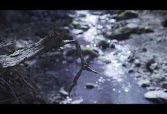 【映画作家主義】ふるいちやすし 第14回 三脚でのカメラワークは動かし方も含めて構図であり、映像演出