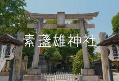 【Views】665『素盞雄神社~ 静寂と活気 ~』~優しさに溢れるカメラの視点は時に驚き、時に喜ぶ表情をそっと記録していく
