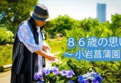 【Views】667『86歳の思い〜 小岩菖蒲園 〜』2分7秒〜東京大空襲をくぐり抜けた女性が体験談を語る新感覚のドキュメント