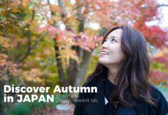 【Views】672『Discover Autumn in Japan』59秒〜日本の季節の美しさをギュッと1分におさめたディスカバームービー