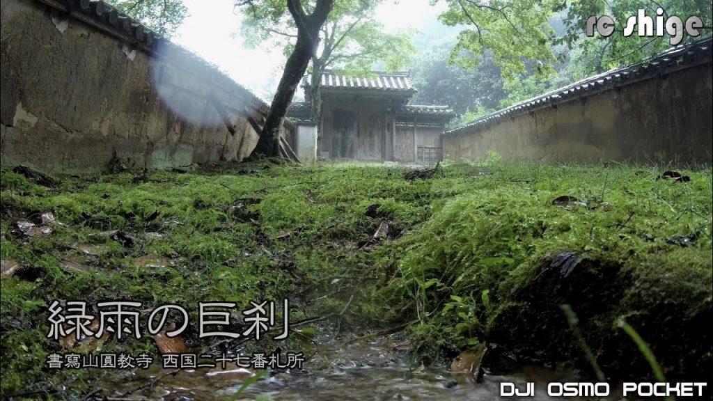 【Views】690『緑雨の巨刹』3分19秒〜山あいに静かにたたずむ寺の雨中の光景を雨音とともに描く。撮影時に降り出した想像を超える大雨は作品のトーンを大胆に塗り替えていく