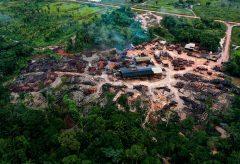 ブラックマジックデザイン、SeeBoundlessがアマゾン熱帯雨林 の3D拡張現実を「Blackmagic eGPU Pro」で作成したことを発表