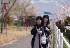 【Views】752『平成31年「春」〜平成から令和へ〜』2分~新元号令和になる前の平成最後の春をスケッチ