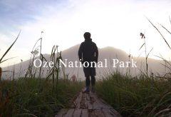 【Views】777『尾瀬ヶ原トレッキング trekking Oze National Park cinematic』2分23秒〜お決まりの尾瀬の風景だけじゃない登山者目線のインサートカットが美しい