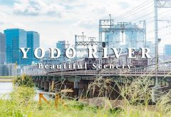 【Views】808『YODO RIVER -Beautiful Scenery-』1分42秒〜ビル群と草花の対比が醸し出す都会のオアシス感を小気味よく描く