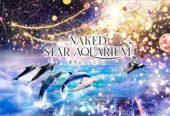 ネイキッド、マクセル アクアパーク品川にて「NAKED STAR AQUARIUM -星空のクリスマス-」を演出