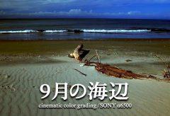 【Views】846『9月の海辺』1分41秒〜秋の海を、サチュレーションとコントラスト強めの画調で点描した歳時記