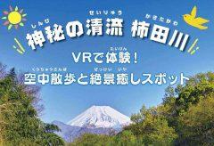 日本三大清流「柿田川」を8K VRでPR。2月2日に公開体験会を開催