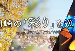 【Views】910『岡崎城の彩りを巡る。紅葉&花見&イルミネーション』4分26秒〜移りゆく季節をセンスのいい構図で紡いでいく動く点描作品
