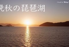 【Views】916『晩秋の琵琶湖(水鳥公園)』3分34秒〜逢魔が時の刹那を狙った幻想的なショート・ドキュメント。鳥たちはすみかの島に戻りしばしの休息の時をむかえる