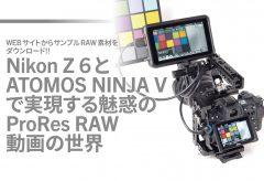 Nikon Z 6と ATOMOS NINJA V で実現する魅惑の ProRes RAW 動画の世界(オリジナルRAW素材をダウンロード可能!)