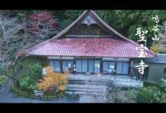 【Views】961『鳴谷山・聖宝寺』3分14秒〜自然そのままの風情を大切にしながら枯れた世界が美しい。ラストの大銀杏は圧巻