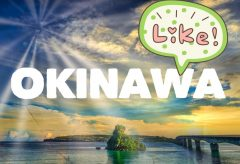 【Views】973『沖縄』2分19秒沖縄の絶景名所をアグレッシブなカメラアングルであっという間に巡っていく