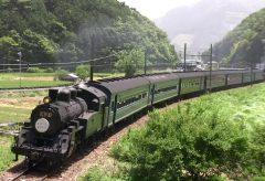【Views】1014『懐かしきSLの鼓動』2分~冒頭の機関車がやってくる前の望遠ショットですでにワクワク感を覚える