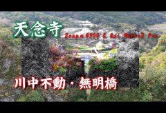 【Views】1018『仏の里~祀られて』2分17秒~そこに在り続ける古寺にしずしずとカメラが向かう
