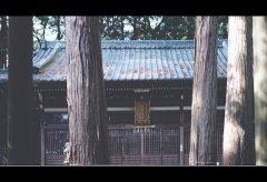 【Views】1022『立春/宇賀神社(UGAJINJA)』1分17秒~見慣れたはずの地元の神社。そのディテールをカメラは暴いていく