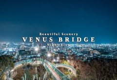 【Views】1025『VENUS BRIDGE Night View -Beautiful Scenery-』1分2秒〜煌めく夜景と共に伝わってくる街の音も印象に残る