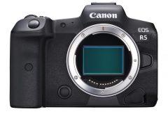 キヤノン、EOS R5の仕様をさらに公開。8KはRAW動画、4K/120pハイスピード撮影対応、10bit Canon Logも。