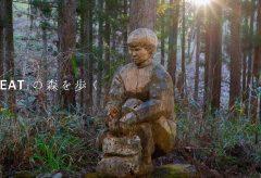 【Views】1029『「KEAT」の森を歩く』5分58秒〜ネイチャー作品でありトレッキング作品でもありアート作品でもあるという多面性を感じる一作