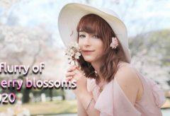 【Views】1101『A flurry of cherry blossoms 2020』2分41秒〜オーストリアのケーキ姫さんを満開の桜の下で4K撮影
