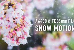 【Views】1116『SNOW MOTION』1分42秒〜桜が満開の時期に珍しく降った雪をスローモーションで印象的に