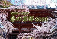 【Views】1161『春の京都 2020』3分1秒〜先代の叡智の結晶の建造物や自然をまさに「今」の視点で綴った作品