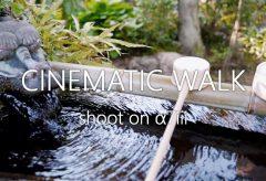【Views】1172『cinematic walk』1分11秒〜外出自粛の中での密を避けてマスクでお散歩日記