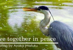 【Views】1188『Live together in peace〜共に生きることについて考える』2分58秒〜動物や植物とともに生きている。大切なことに気づかされる作品