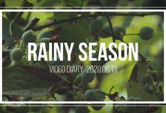 【Views】1245『Rainy season   Video Diary shot on Canon EOS 80D』2分24秒