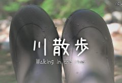 【Views】1254『川散歩 Walking in the river』2分28秒