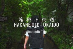 【Views】1272『Hakone Old Tokaido Stone pavement cinematic trip』1分36秒