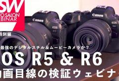 EOS R5 & R6 動画目線の検証ウェビナーアーカイブと追加検証(EOS R5 と R6 の4K画質比較)