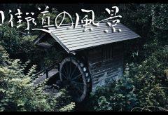 【Views】1303『奈良壺阪山旧街道の散歩』2分54秒